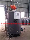 产气量500kg天然气、煤气、石油液化气、燃气蒸汽锅炉