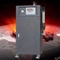 扬诺锅炉免年检3-50KW全自动电蒸汽锅炉