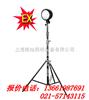 DGY100ADGY100A系列便携式升降防爆灯,RJW7101,JW7210 上海制造